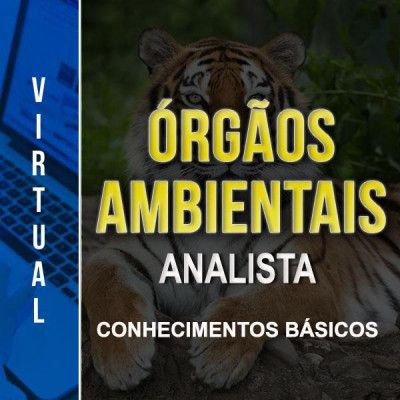 [Virtual - Órgãos Ambientais  - Analista - Básico]